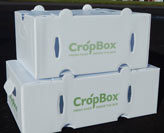 CSA crop boxes for delivering produce