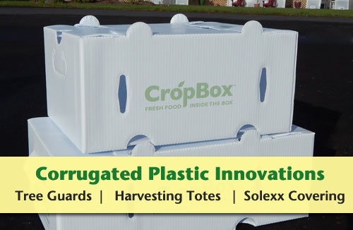 Corrugated Plastic Innovations including tree guards, CSA boxes, Harvesting Totes and Greenhouse Paneling